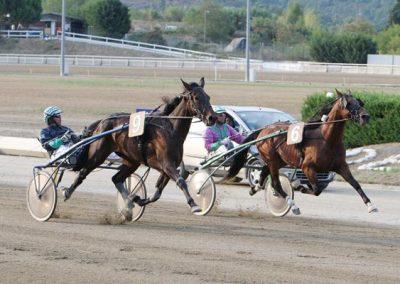 passaggio-premio-daguet-rapide-iri-horse